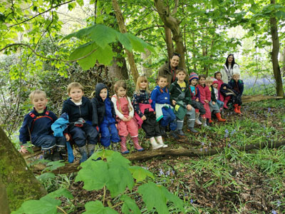 Model animals in forest school